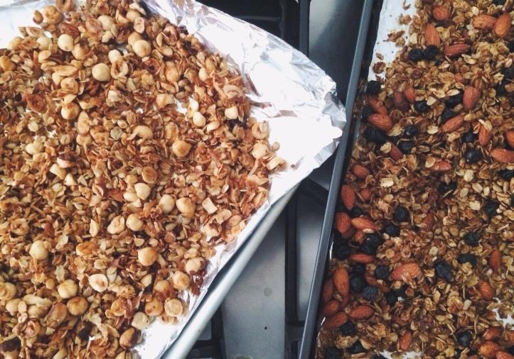 Hazelnut Coconut Granola & Blueberry Almond Granola